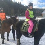 konie_