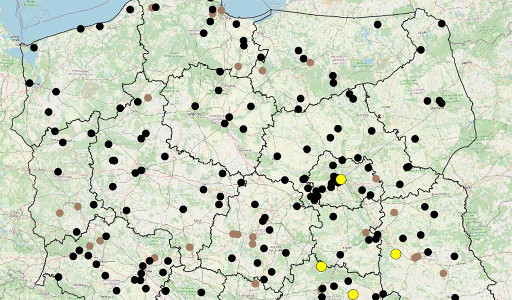 Policyjna mapa wypadków drogowych ze skutkiem śmiertelnym